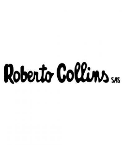 Inmobiliaria Roberto Collins